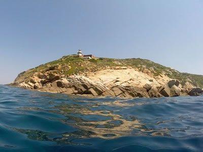 Punta Nord Fenaio all'Isola del Giglio