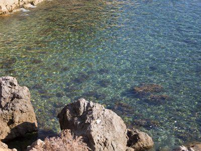 acque della costa gigliese
