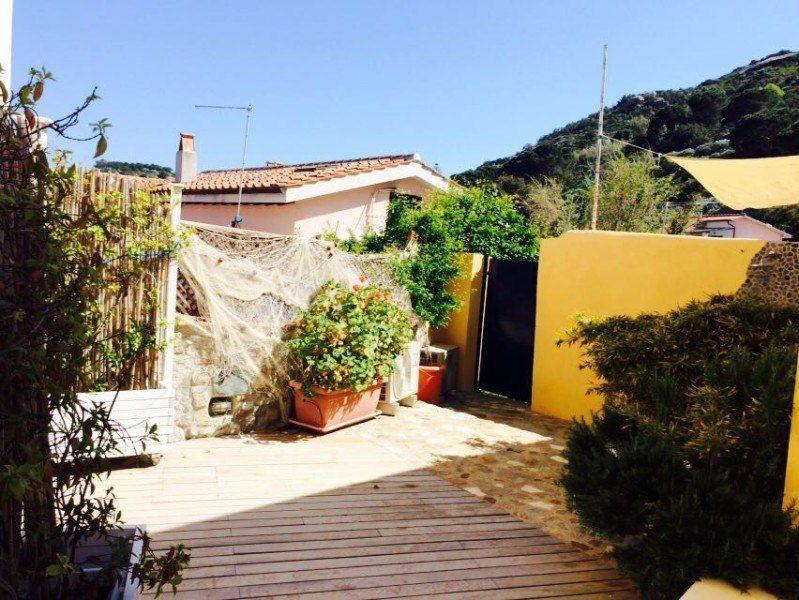 Cortile esterno con piante e muretto giallo presente nel bilocale Giorgio in affitto a Giglio Porto
