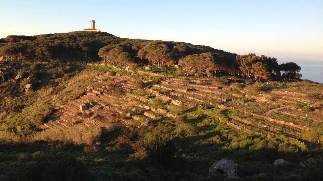 Terreno in vendita ad Isola del Giglio Campese, comprensivo di annesso agricolo