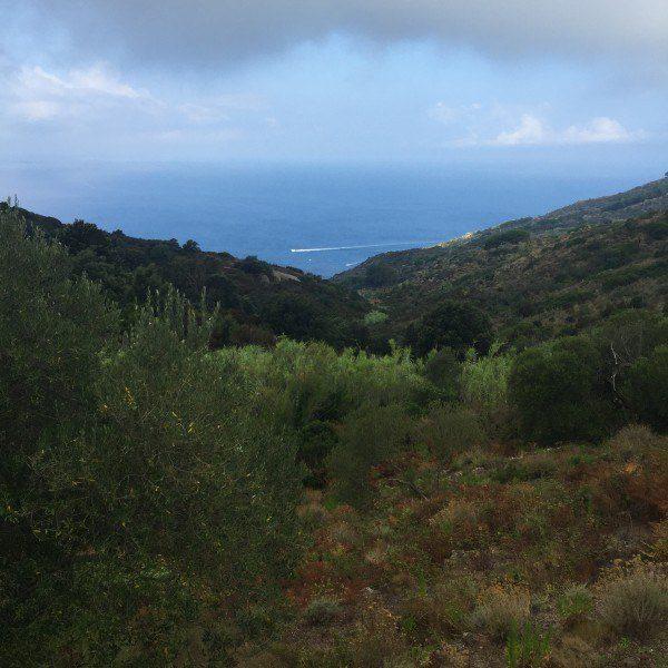 Vista del mare di Isola del Giglio presso terreno in vendita