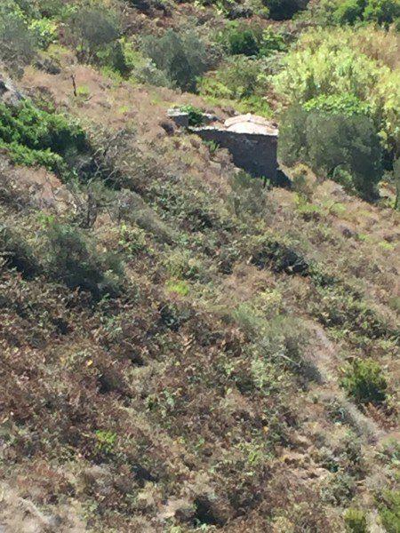 Vista da lontano di annesso agricolo in vendita a Giglio Campese